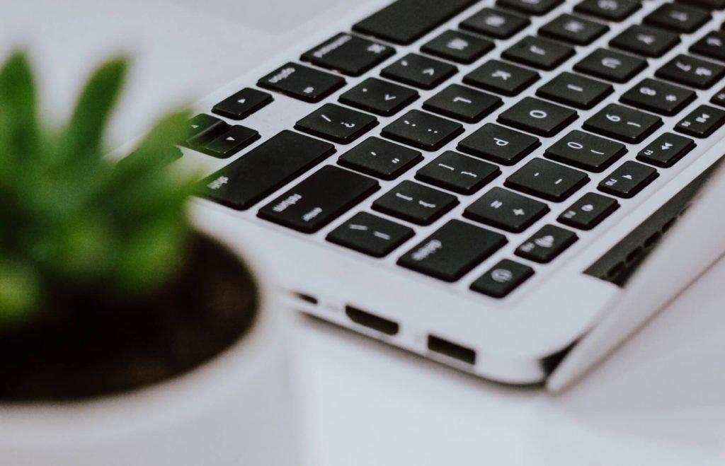 Uma planta desfocada na frente com um Macbook ao fundo
